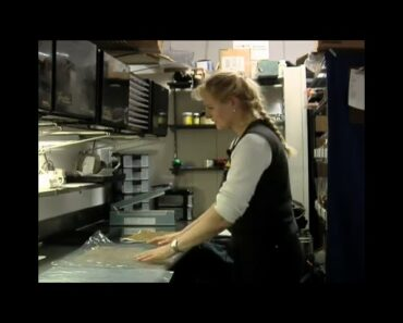Tips on Dehydrating Food for Healthy Vegetarian Cooking