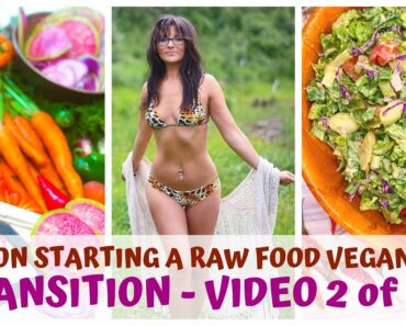 TRANSITION • TIPS ON STARTING A RAW FOOD VEGAN DIET